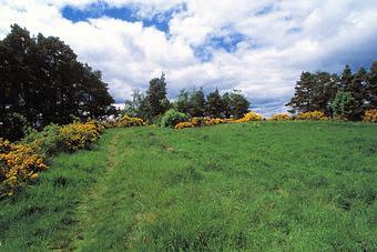 Craig Phadrig Hill Fort