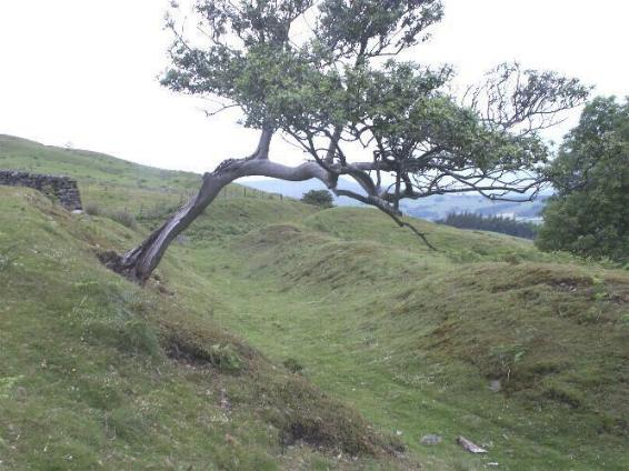 Braithwaite Wood Fort, East Witton