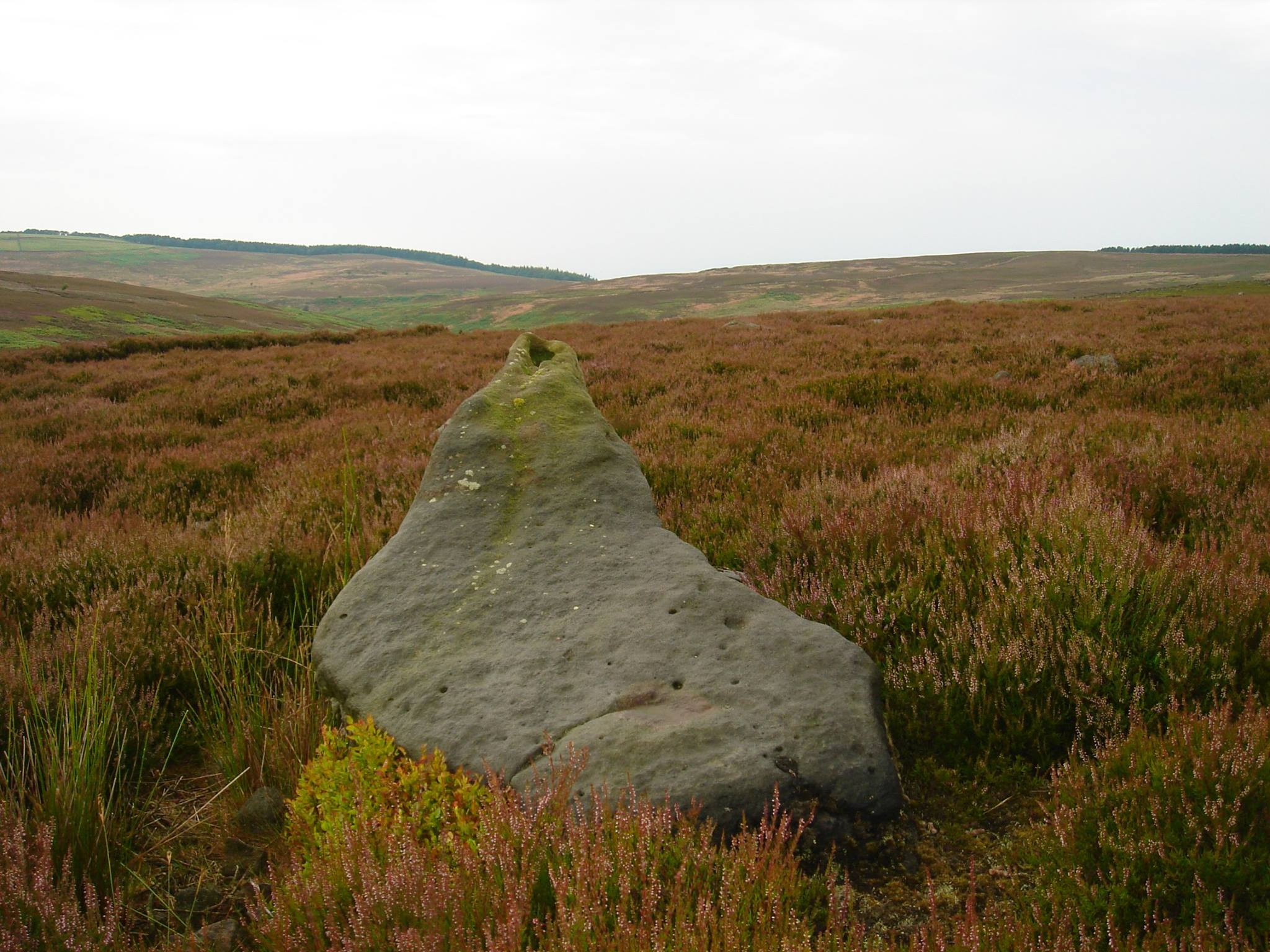 Near Moor Rock Art